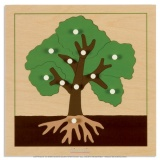 Puzzle de botanique : arbre