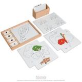 Exercices autour des puzzles de botanique en anglais