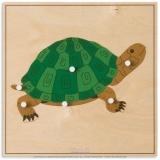 Puzzle animal : tortue