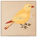 Puzzle animal : oiseau