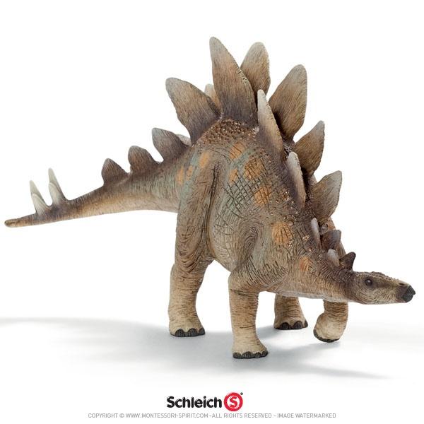 Stegosaurus for Pinterest