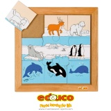 Animals puzzle - polar animals