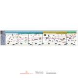 Timeline of Life (Display)