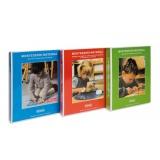 Materialbuch Teil 2, Sprache