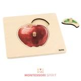 Puzzle pour tous petits : Pomme