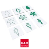 Cartes des formes de feuilles