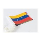 Jeu complet de drapeaux de l'Amérique du Sud (30 drapeaux)
