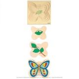 Puzzle évolutif - Papillon