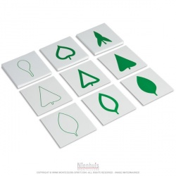 Cartes des feuilles d'arbre