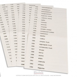 Etiquettes du troisième jeu de cartes de botanique en anglais