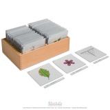 Boite de rangement troisième jeu de cartes de botanique