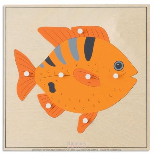 Puzzle animal : poisson