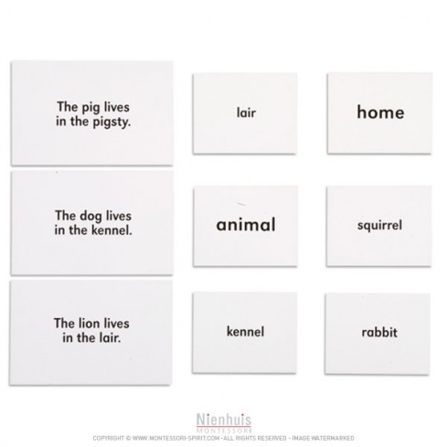 Animals And Their Homes en anglais