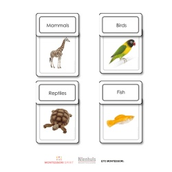 Five Classes of Vertebrates Sorting Cards