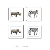 African Animals Matching Cards