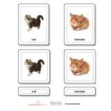 Pets 3 Part Cards