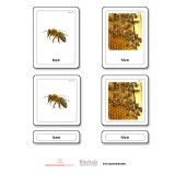 Animal Homes 3 Part Cards
