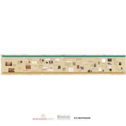 Timeline of Communication (Display)